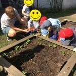 Gartenarbeit!